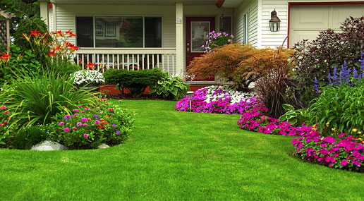 JT Services Lawn Care, LLC - About Us